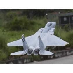Freewing - F-15C Eagle...