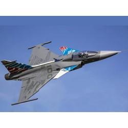 Freewing - JAS 39 Gripen...