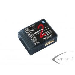 Brain - MSH51630    MSH...